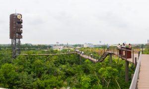 22 Tempat wisata seru dan menakjubkan di Bangkok yang bisa dinikmati secara GRATIS!