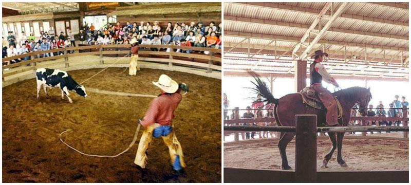 3-d-cowboy-show-via-prevuew