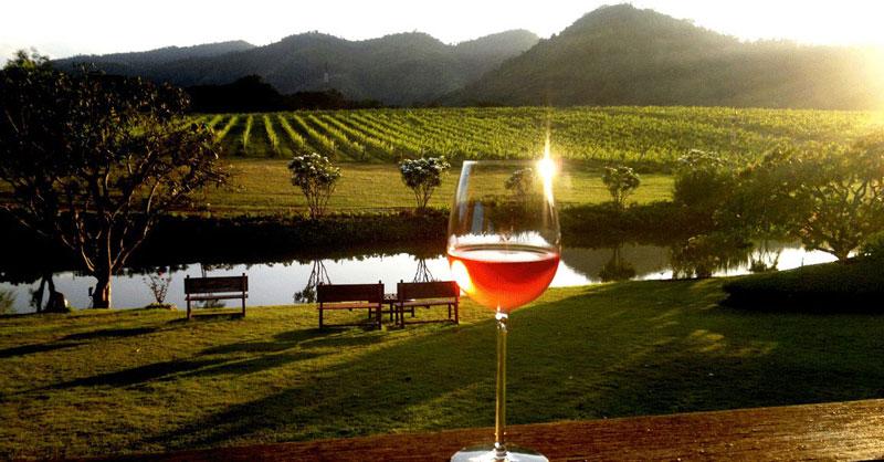 7-4-wine-tasting