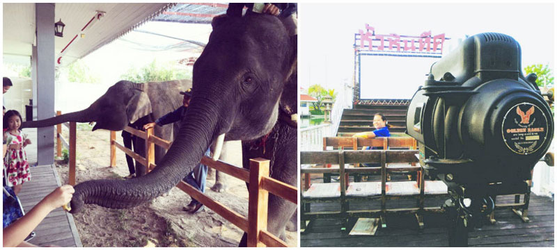4-elephant-show,-open-cinema-via-mick.spm,-n_army