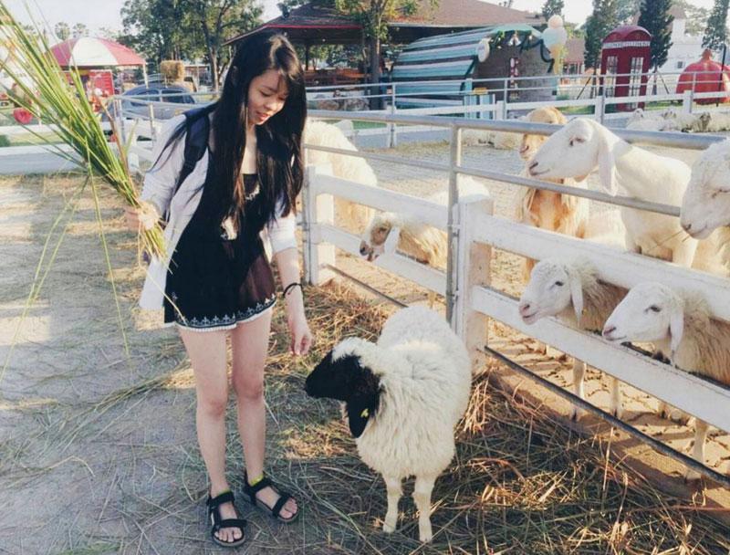 5-sheep-via-meihua_ruby1110