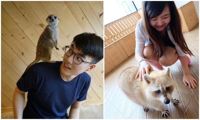 18-3-petting-via-f3rddd,-chaya.z
