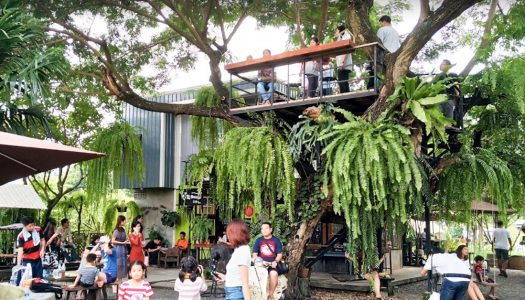 7 reasons to bring your kids to Cafe Farm (บ้าน๑,๐๐๐ไม้cafe'&farm) in Bangkok, a family-friendly farm cafe