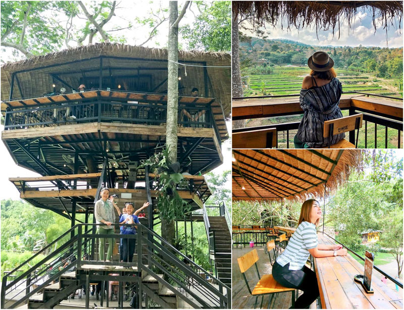 30 Extraordinary Cafes In Chiang Mai Await Including A