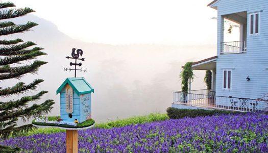 泰国天空之城:19个考柯(Khao Kho)的绝美景点带你告别炎热的天气
